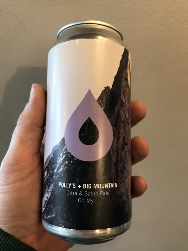 Oh My.. Pale ale by Polly's Brew co with Big Mountain.