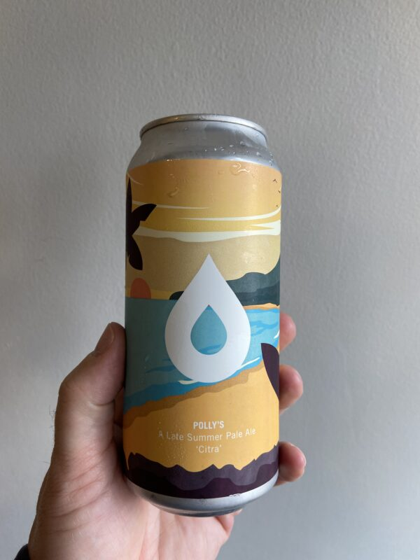 Citrus- A Late Summer Pale Ale by Polly's Brew Co.
